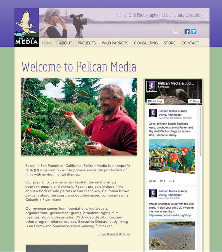 Pelican Media Wix Design